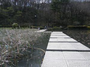 蓮池.jpg